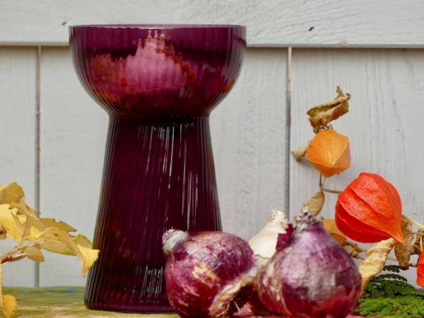 Hyazinthenglas, gerippt, plum