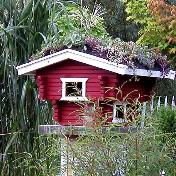 Vogelhaus mit Dachbegrünung, rot