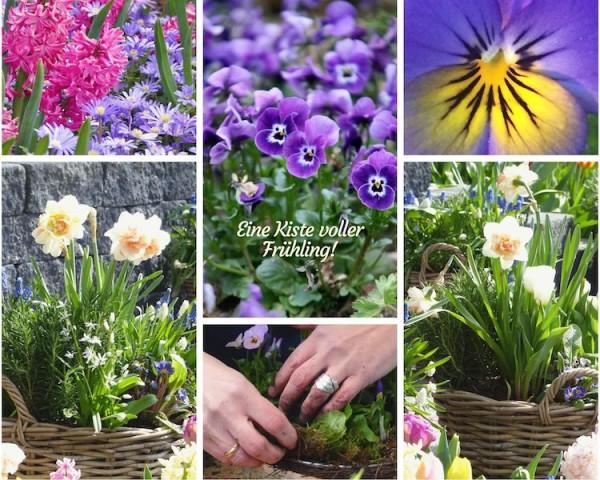 Frühlingskiste